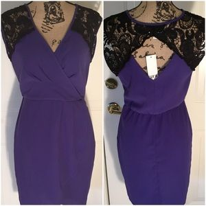 NWT All Occasion Must Have!